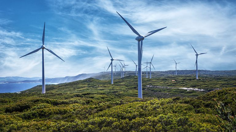 Wind Industry Celebrates Renewable Procurement Programme ...